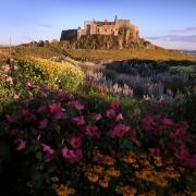 Lindisfarne Castle & Gertrude Jekyll Garden