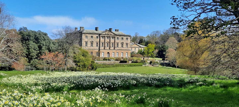 Howick Hall and Gardens